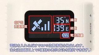 SZ6328.jpg