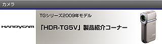 SZ6866.jpg