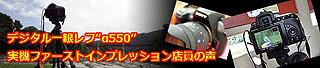 ZDS2260.jpg