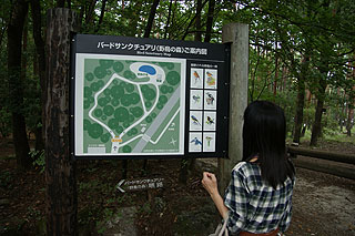 wx1-07.jpg