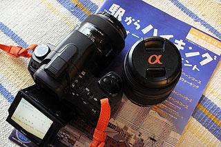 DSC00137.jpg